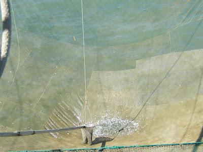 Pescare al trabucco