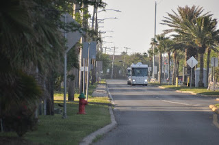 palm tree lined street with only a motorhome for traffic