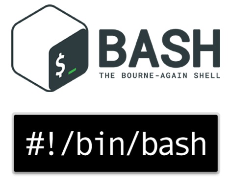 CS-Tech-Era: BASH Script: Copy Files From Source To
