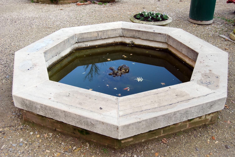 Giardini reali a venezia for Vasca per stagno