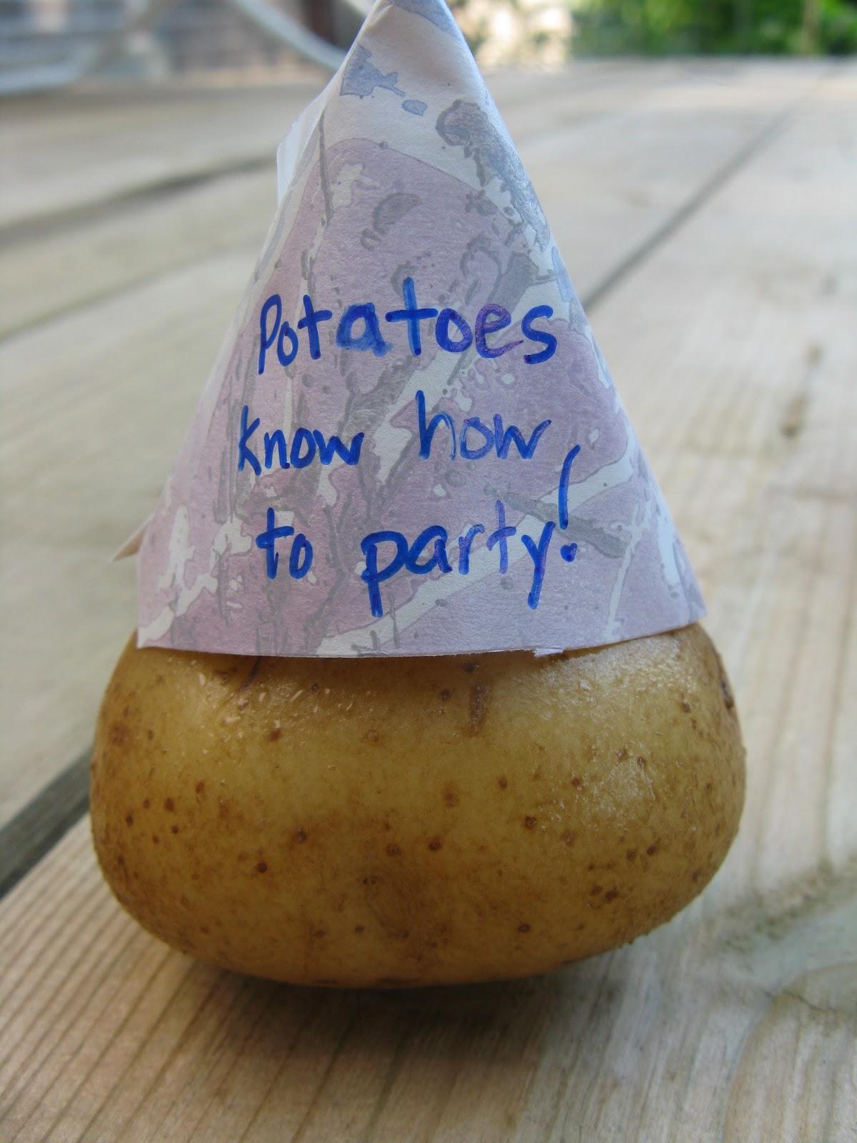 An enjoyable party essay
