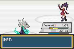 pokemon sky twilight screenshot 5