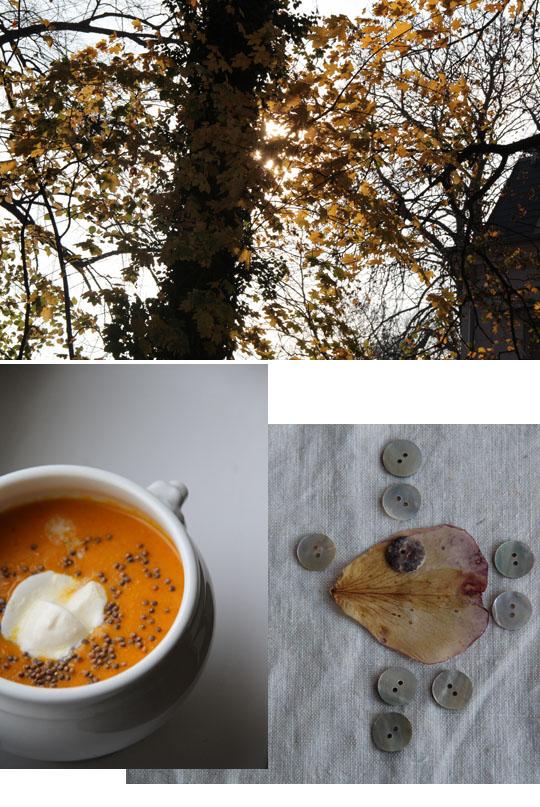 kürbissuppe (mit curry + kokosmilch) I fräulein text