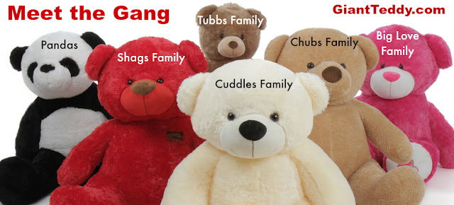 Some of our Teddy Bear Families