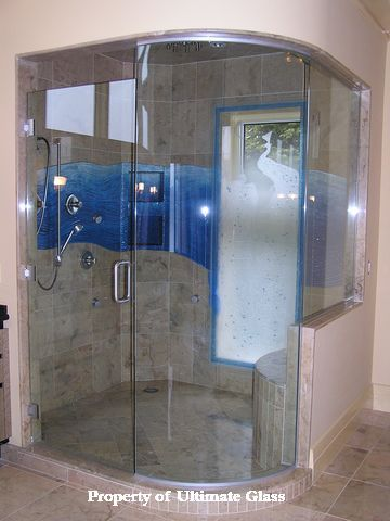 Shadow Glass Solutions Canopy Automatic Doors Shower