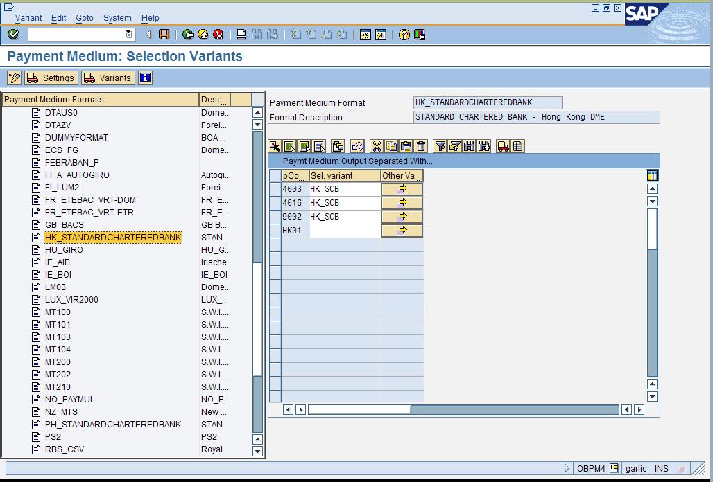 SAP - Data Medium Exchange (DME)