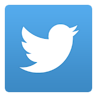 Twitter logo, white bird on a light blue square