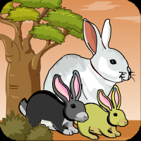 Play Games4escape Bunny Forest Escape