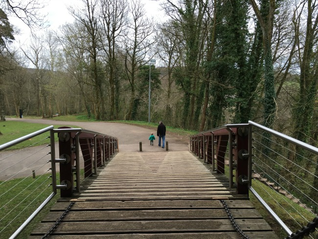 #MySundayphoto number 17. Man and toddler walking away with woods around and a bridge in the foreground. All lines point to them