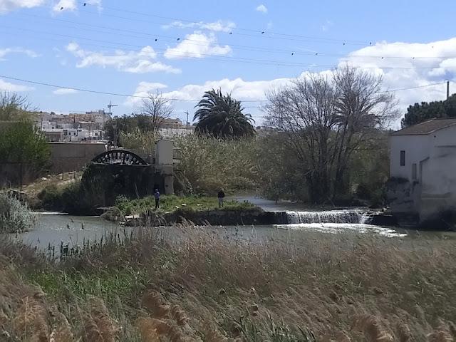"""Parque natural """"El Molino"""""""