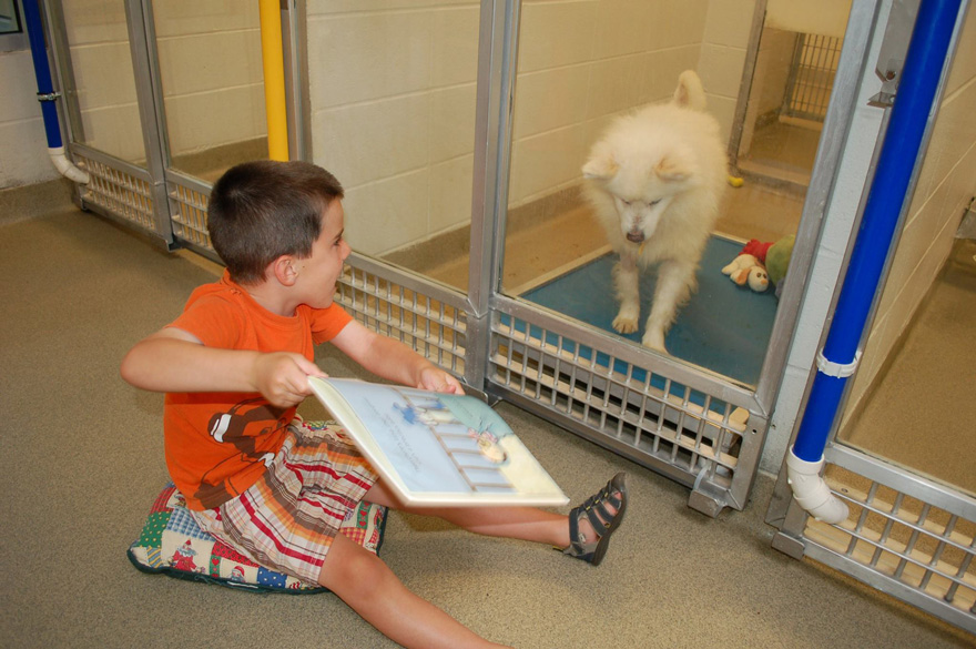 """""""Reading to the dogs helps to bring comfort to and reduce the anxiety of shelter pets"""" - Children Practice Their Reading Skills To Calm Shy Shelter Dogs"""