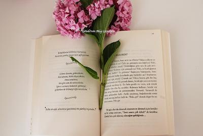 Kapalı Gişe Yalnızlık - Serkan Özel