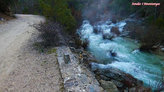 Sendero, río Borosa, Pontones, Sierra de Cazorla, Jaén, Andalucía