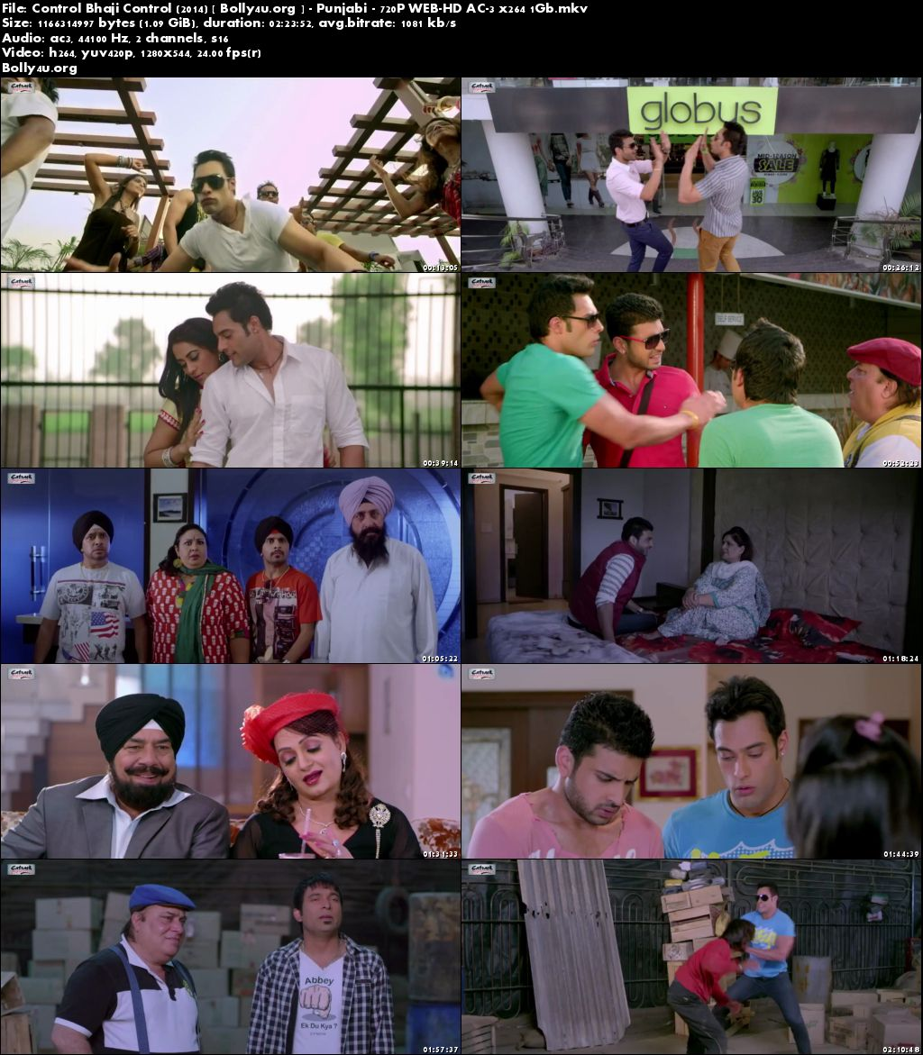 Control Bhaji Control 2014 HDRip 1GB Full Punjabi Movie 720p Download