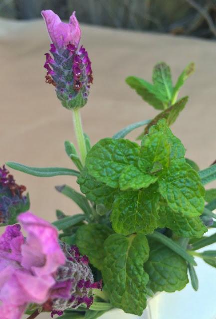 Lavender and Mint Bouquet Idea | www.jacolynmurphy.com