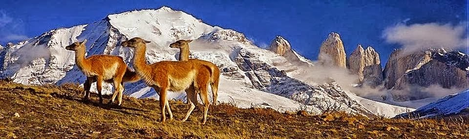 Chile: Tourist Places and News