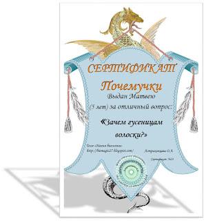https://biomagic27.blogspot.com/2017/11/blog-post-zachem-gusenicam-voloski.html