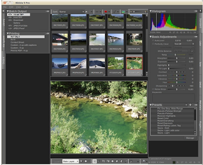 Bibble 5 Pro Digital Imaging Application for Linux