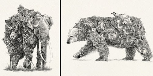 00-Nathan-Ferlazzo-Animal-Drawings-within-Drawings-www-designstack-co