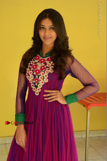 Actress Pooja Jhaveri Latest Stills in Purple Salwar Kameezt at Dwaraka Success Meet  0081.JPG