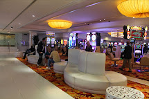 Stay Stray Play And Feast Tropicana Double Tree