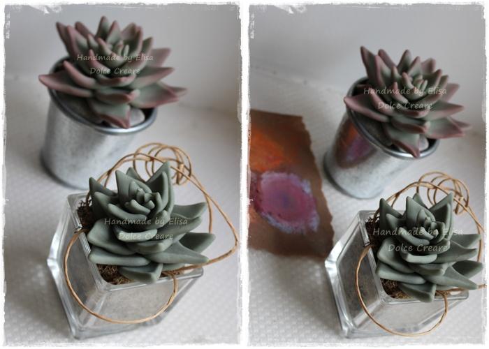 Composizione Piante Grasse In Vaso Di Vetro.Dolce Creare Piante Grasse