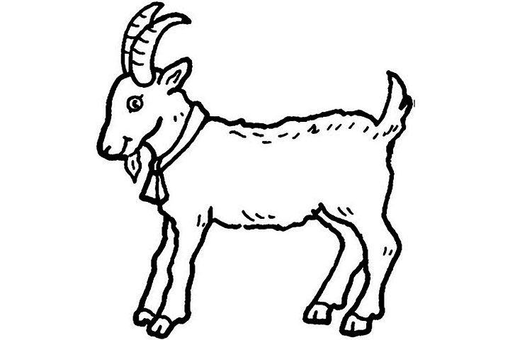 Pictures Of Animals Coloring Kids  Goat The Farm Animal Coloring Pages f378855ea