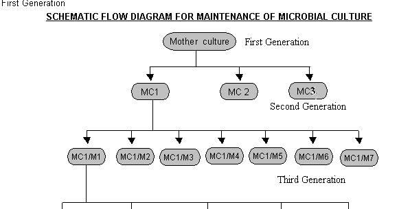 Subculturing maintenance of microbial cultures pharmaceutical guidelines