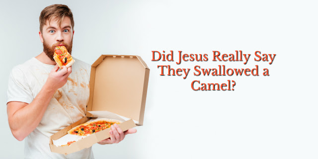 Did Jesus Really Say That About Swallowing a Camel?