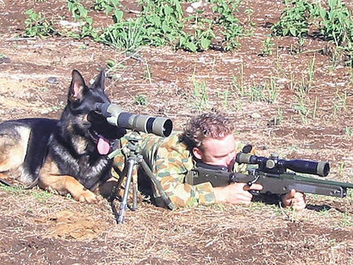 nope no iraqis but i do see a squirrel