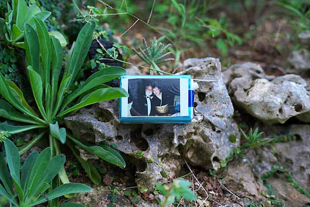 cigarette pack, Polaroid photo, rock garden