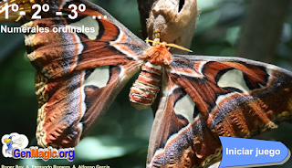 http://www.genmagic.org/repositorio/albums/userpics/primseg1c.swf