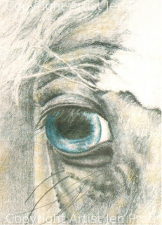 horse drawing, small horse drawings, horse head drawing