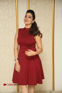Telugu Tollywood Anchor Manjusha Pos in Red Short Dress  0006.JPG