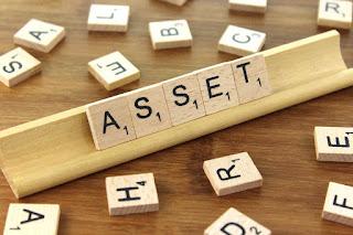 fixed-assets,www.frankydaniel.com