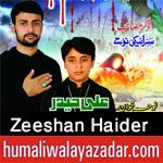 http://www.humaliwalayazadar.com/2012/11/blog-post_2.html