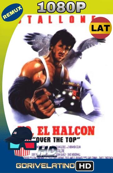 Yo, El Halcón (1987) BDRemux 1080p Latino-Ingles MKV