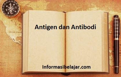 pengertian antigen dan antibodi