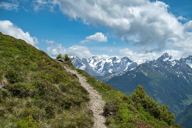Der Pinzgauer Spaziergang  Die Saalbach Wander-Challenge 09