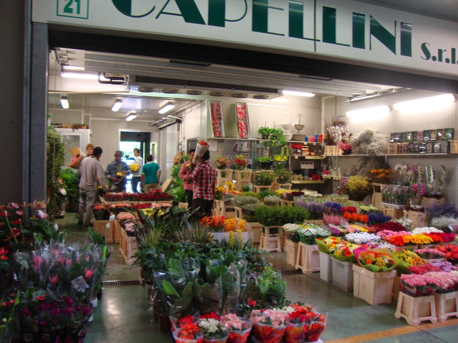 un piccolo giardino in città: il mercato floricolo di milano