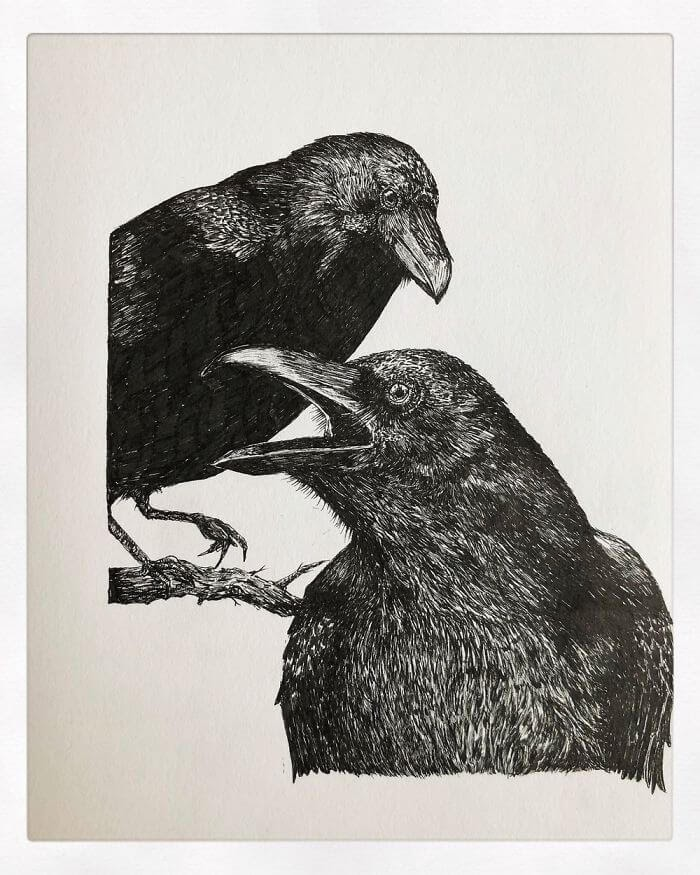 04-Two-Crows-Bas-Geeraets-Black-and-White-Drawings-of-Birds-www-designstack-co