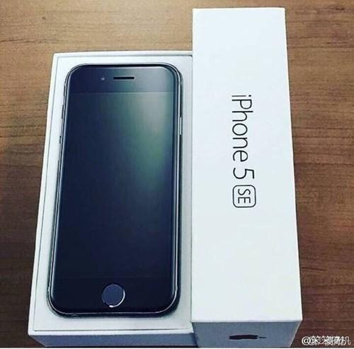 iPhone 5SE chính thức bắt đầu bán ra từ ngày 23/3/2016.
