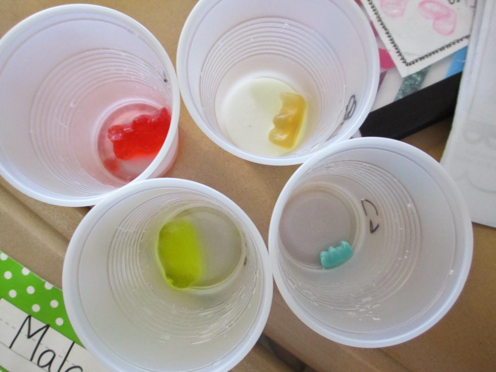 Fabulous In Fifth Scientific Saturday Gummy Bear Lab