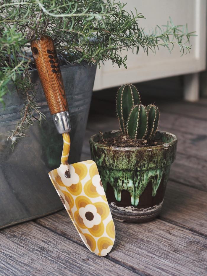 Outils nécessaires pour commencer en jardinage