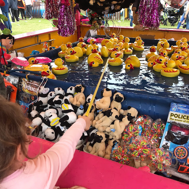 hook the duck at the fair