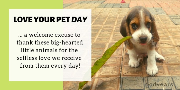 February 20 is 'National Love Your Pet Day'