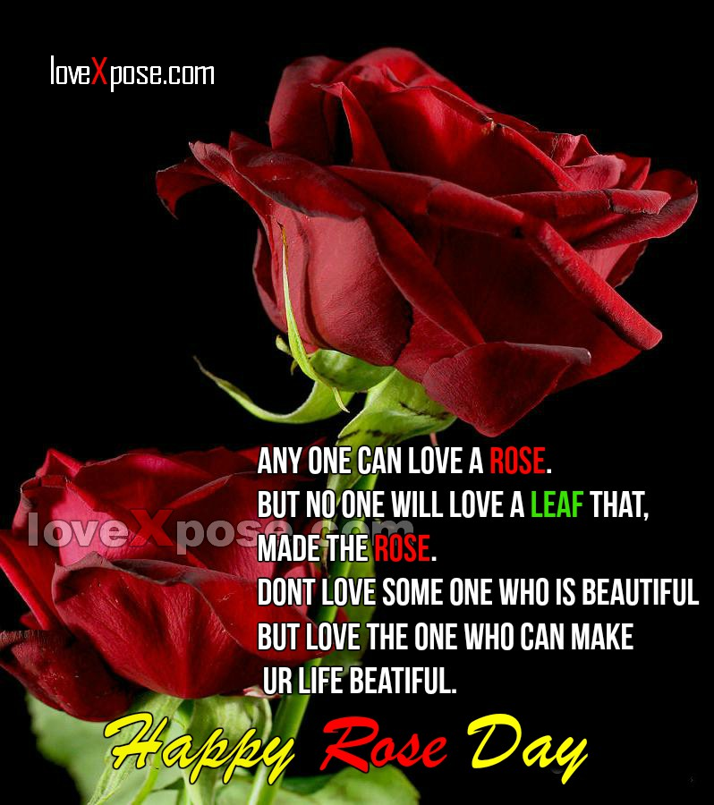 Rose Day msg greetings