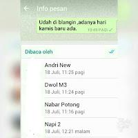 Cara mengetahui yang baca postingan kita di group Whatsapp