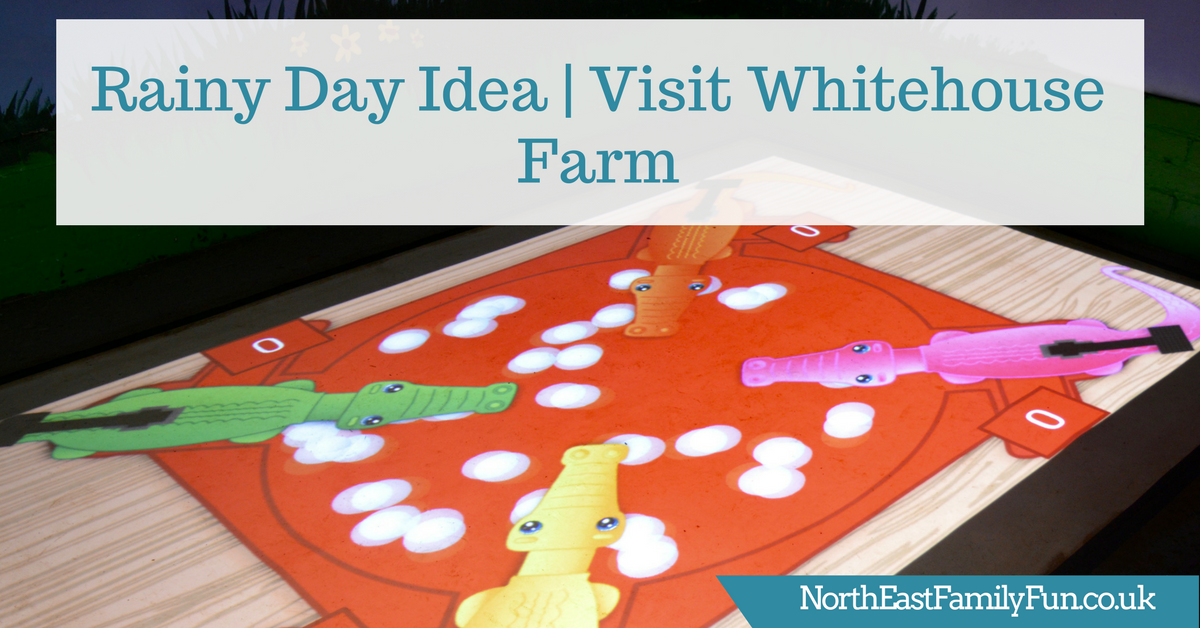 Whitehouse Farm Morpeth | What to do when it rains