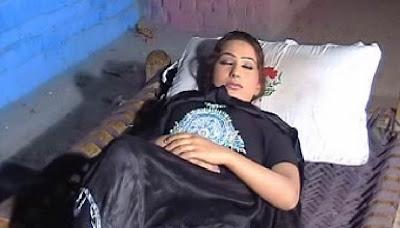 Pashto actress sahiba noor - Intouchables 2011 english
